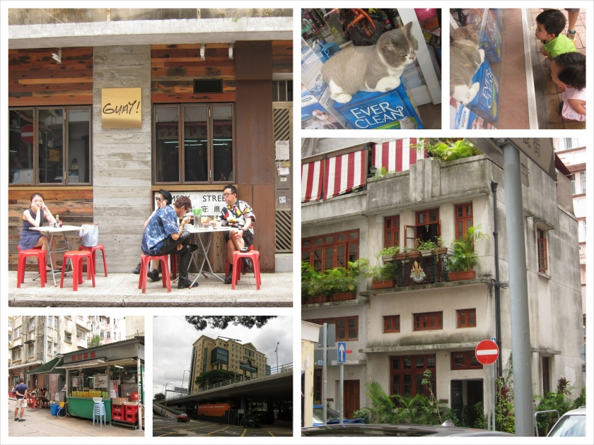 IMG_5182_Fotor_Collage