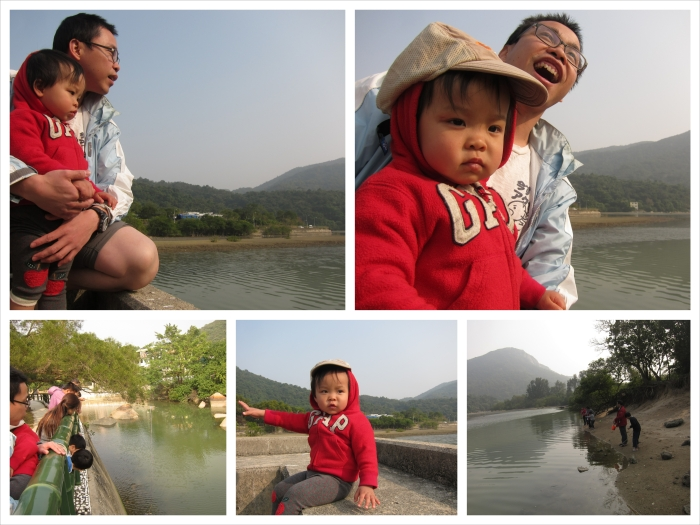 IMG_7707_Fotor_Collage