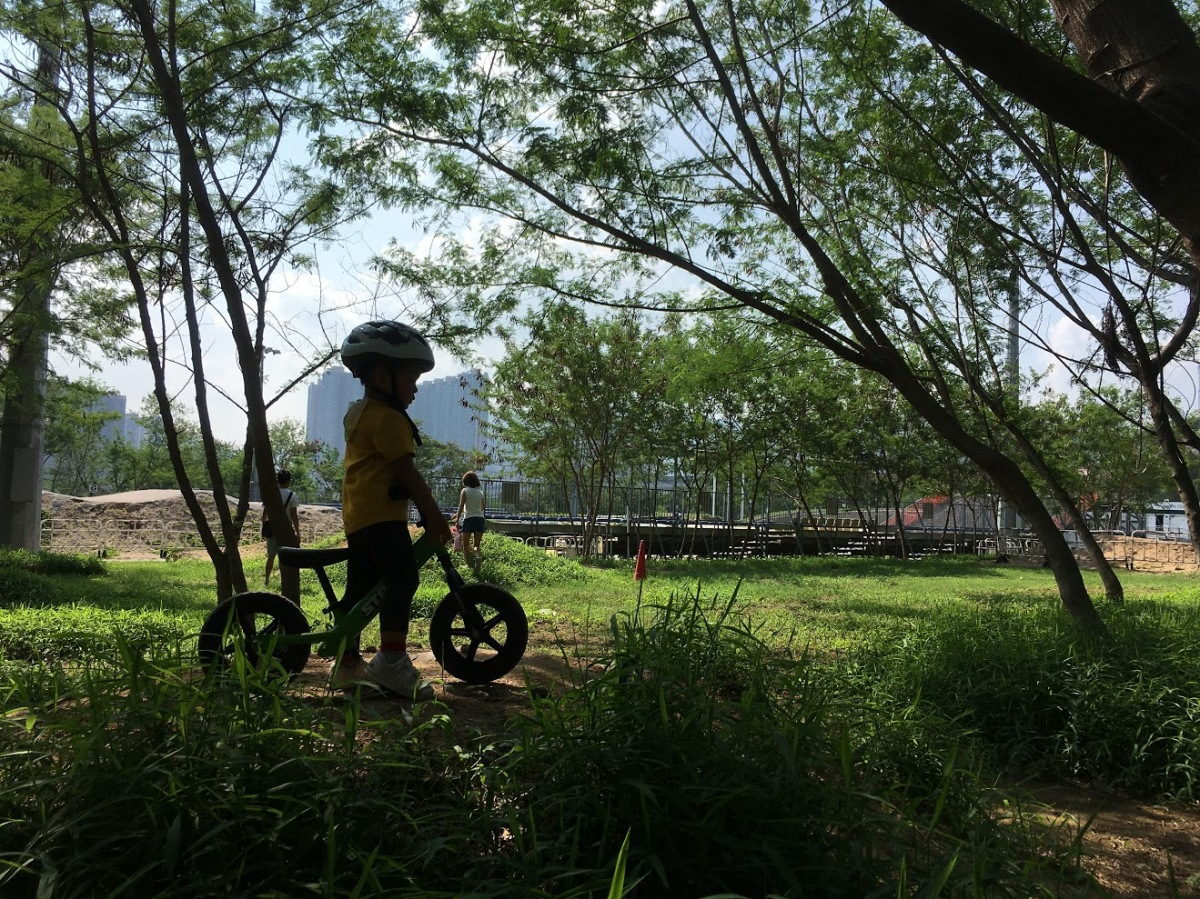幼兒平衡車黨的綠野賽車場:BMX Park